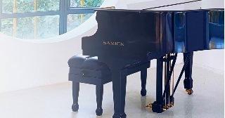 Перевозка пианино и роялей в Москве цена от 413 руб.